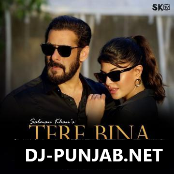 Tere Bina Salman Khan Mp3 Song
